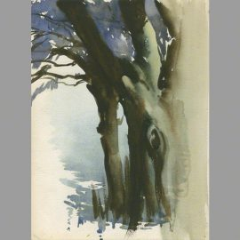 Water colour of trees